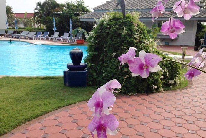 「セラ リゾート チャアム ホテル(Cera Resort Cha-am Hotel)」。欄の花が南国らしい。