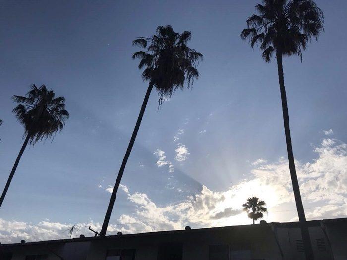 LAのパーツムリー